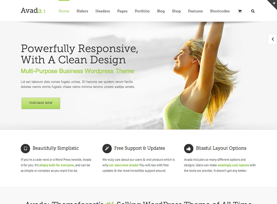 Avada – Best Selling WordPress Themes