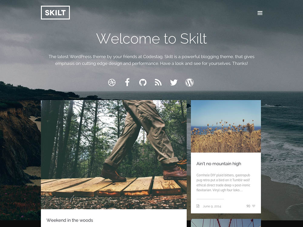 Skilt - Best WordPress Blog Themes