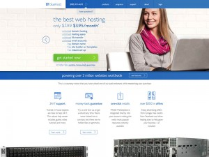 The_Best_Web_Hosting_Fast_Professional_Website_Hosting_Services_-_Bluehost_-_2014-07-15_19.47.16