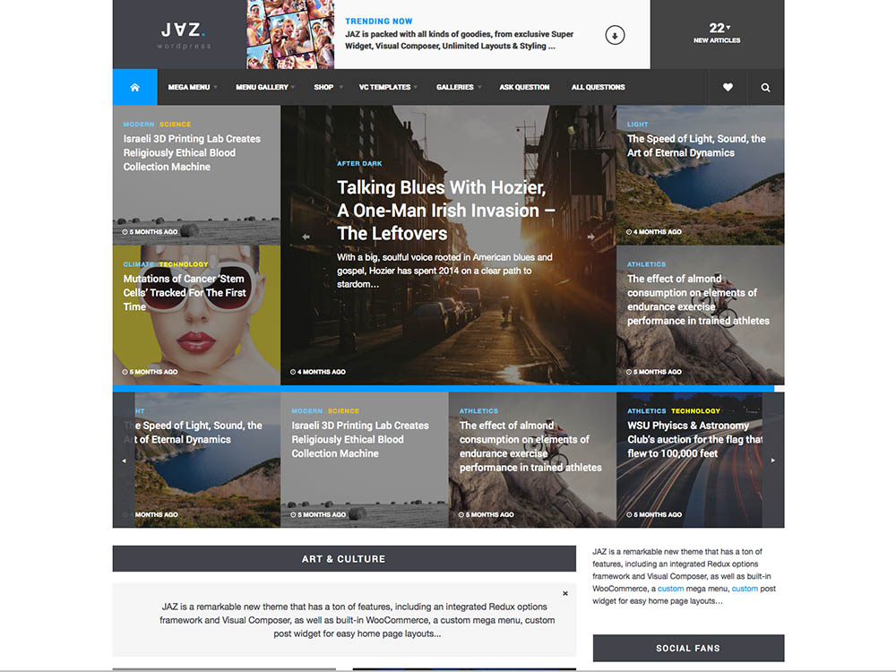 Jaz - Best WordPress Magazine Themes