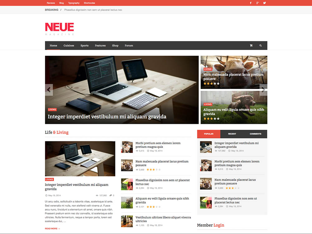 NEUE Best WordPress Magazine Themes
