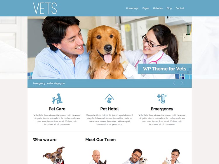 VETS WordPress Theme
