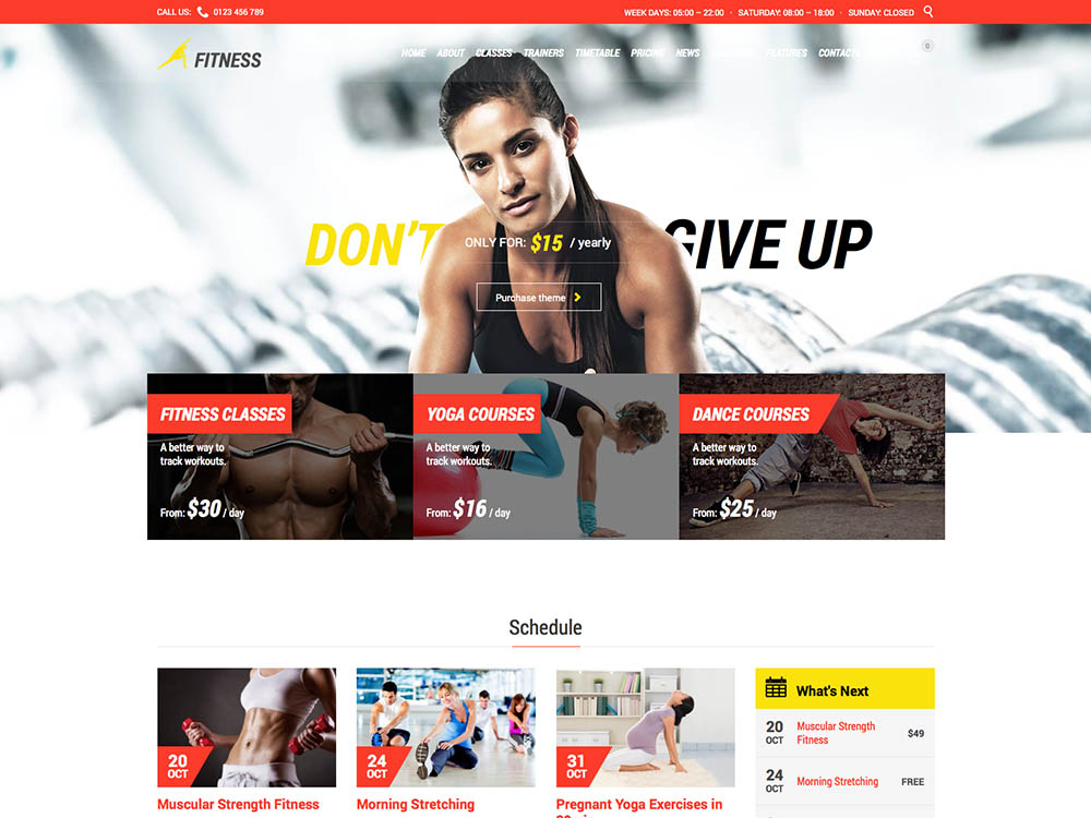 Fitness Theme - Best WordPress Gym and Fitness Themes