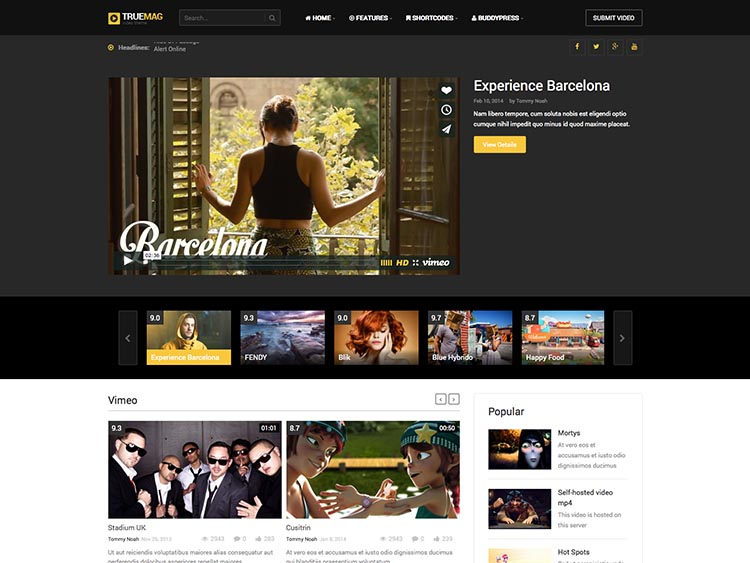 11+ Best WordPress Video Magazine Themes for 2018 - Siteturner