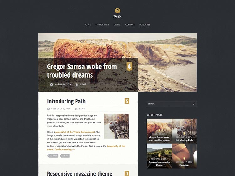 Path - Best WordPress Travel Blog Themes