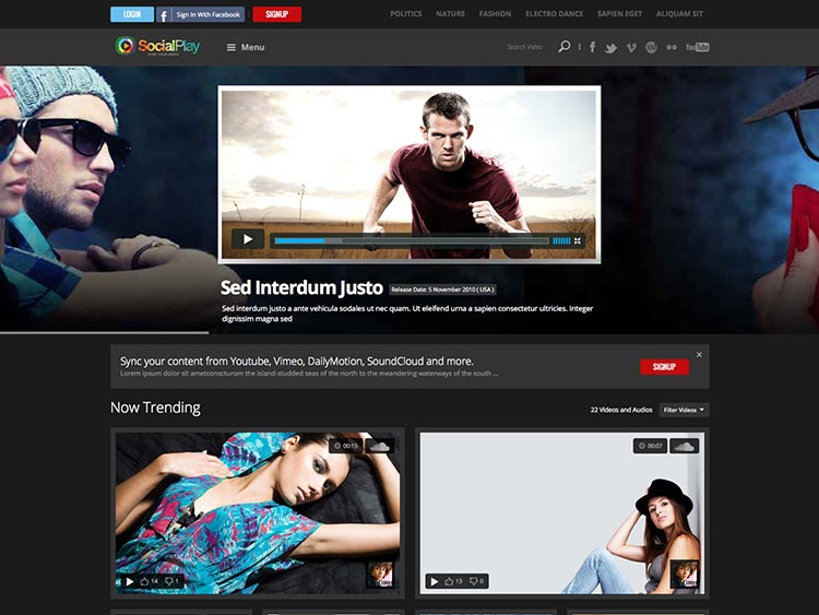 SocialPlay - Best Video Themes for WordPress