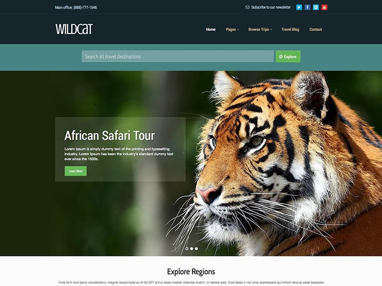 Wildcat - Best WordPress Tourism Themes