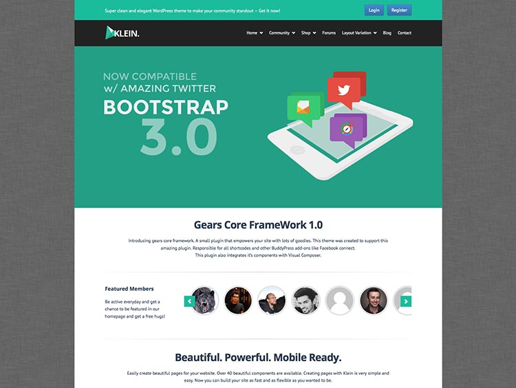 Klein WordPress BuddyPress Theme