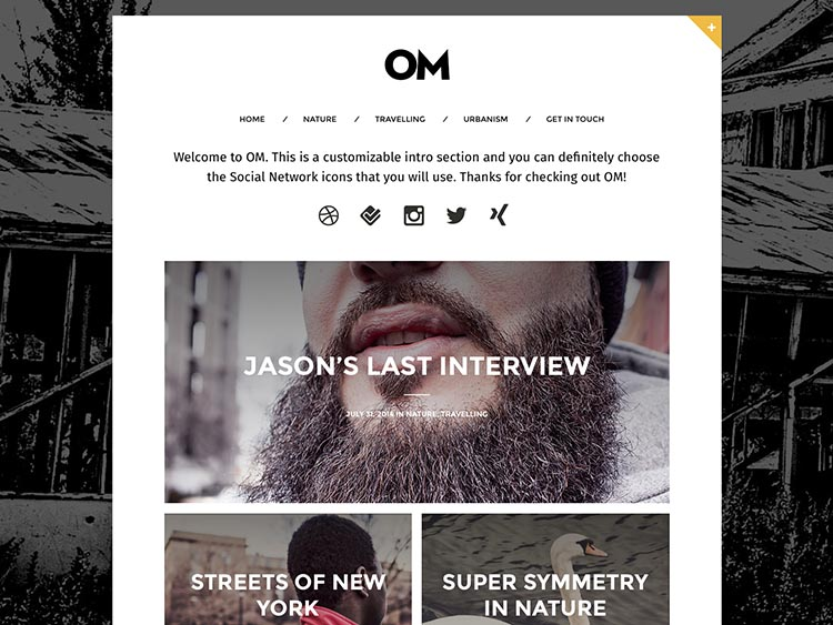 OM WordPress Writer Theme
