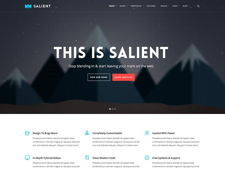 Salient - Best Selling WordPress Themes