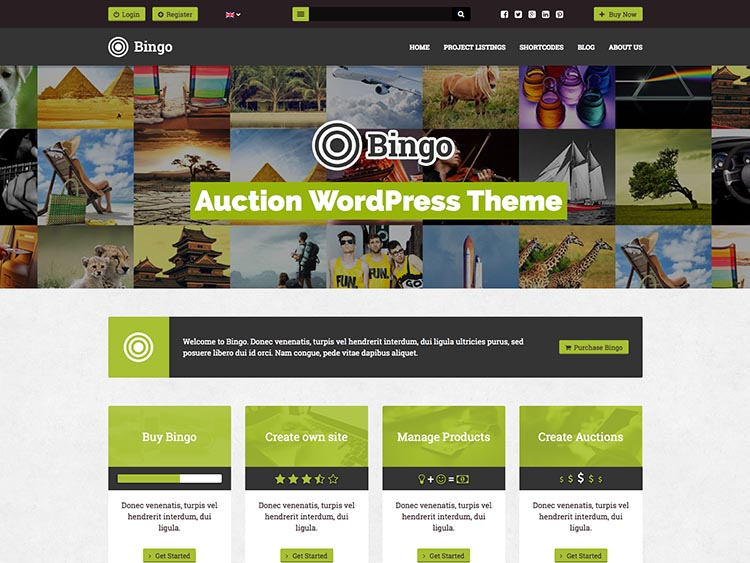 Bingo eBay-Style WordPres Auction/Bidding Theme