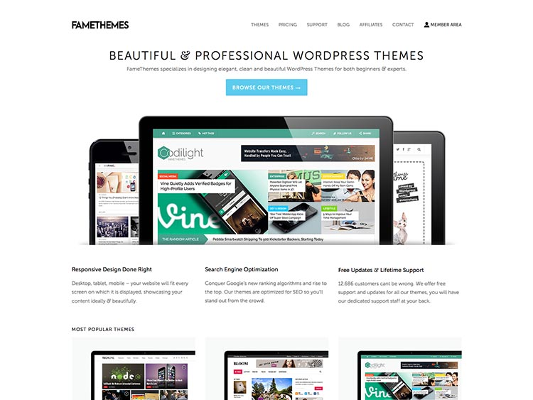 FameThemes WordPress Theme Shop