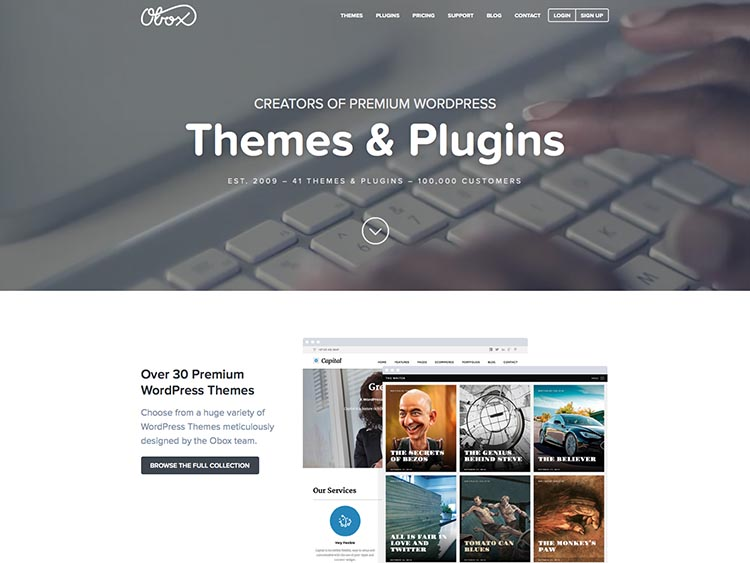 Obxo WordPress Theme Developer