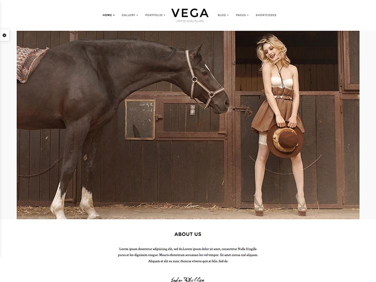 Vega Moible & Retina-ready WordPress Photography Theme