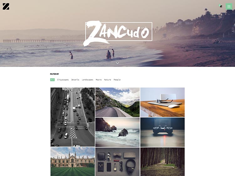 Zancudo Moible & Retina-ready WordPress Photography Theme