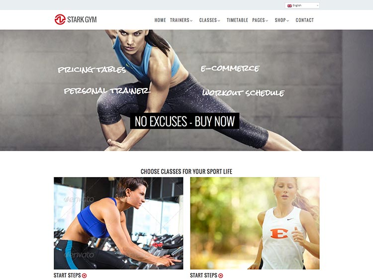 Stark Fitness Theme for WordPress