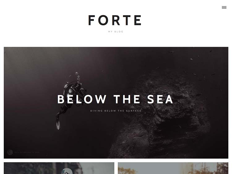 Forte I Premium WordPress Theme for Writers