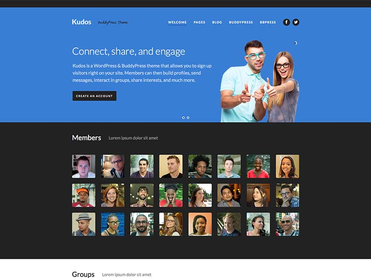 Social networking theme for WordPress