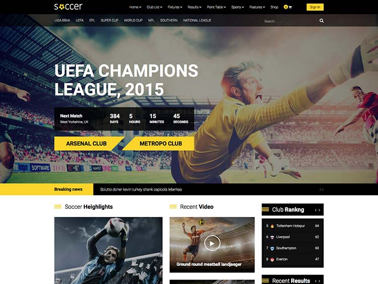 Best team and sports club theme for WordPress