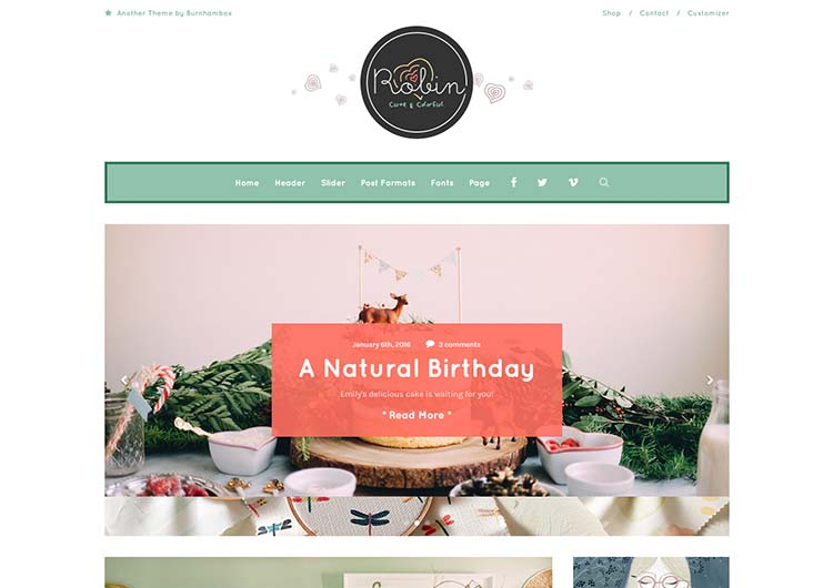 Best feminine WordPress theme for women
