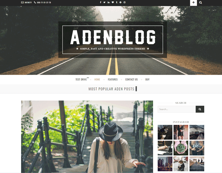 Aden theme - one of the best cheap WordPress themes