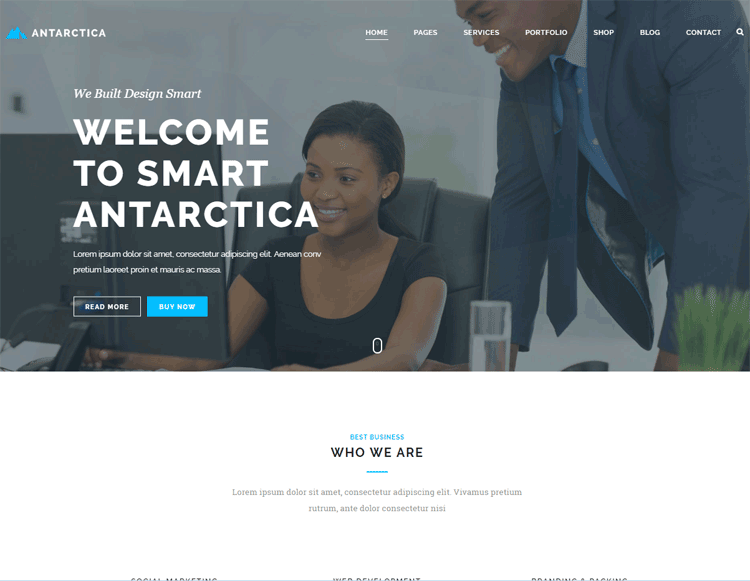 antarctica - one of the best cheap wordpress themes