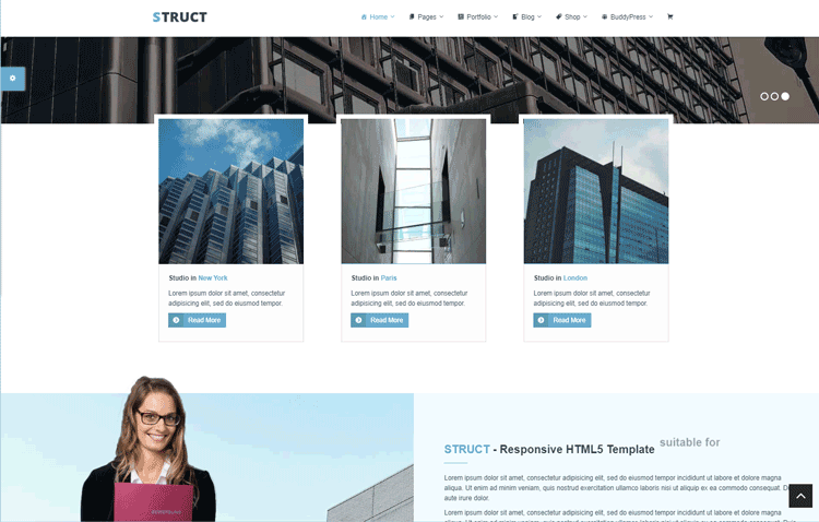 Struct - one of the best cheap WordPress themes