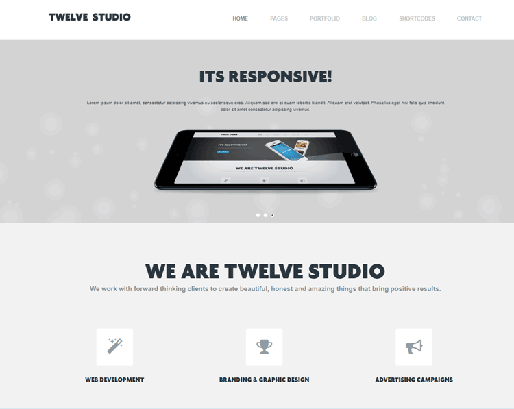 twelve studio - one of the best cheap wordpress themes