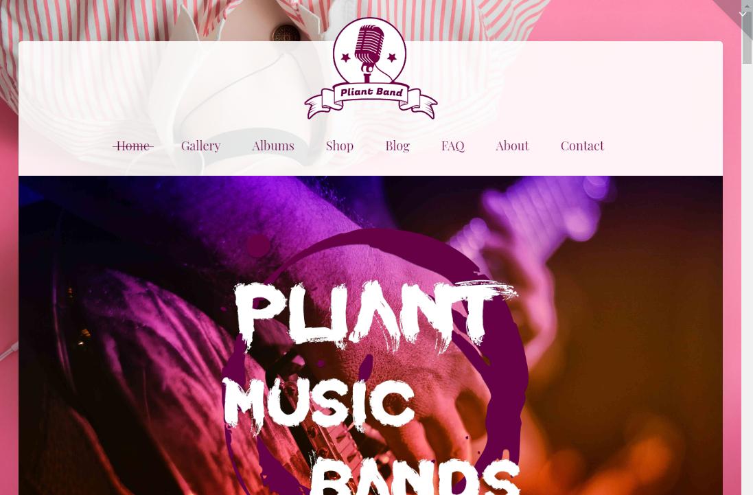 pliant dj theme music wordpress